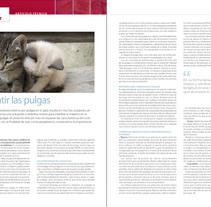 Maquetación de revistas. Um projeto de Design de Penélope Cayero Migens - 18-03-2010