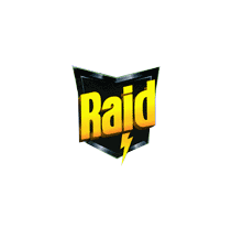 Raid. A  project by Payo - 09-11-2010