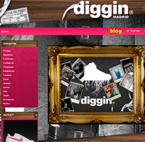 Diggin Online Shop. A Design, Illustration, Software Development, Film, Video, and TV project by Ana Cabo         - 29.12.2011