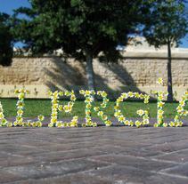 Alergia. Um projeto de Design e Fotografia de eva_maria_romero - 16-10-2012