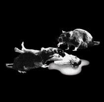 Les Festes de l'Infern. Un proyecto de Diseño, Motion Graphics, Ilustración, Cine, vídeo, televisión, 3D, Fotografía, Música y Audio de Black Art Syndikat  - Viernes, 21 de diciembre de 2012 22:18:57 +0100