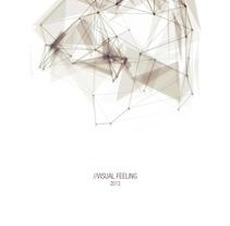 VISUAL FEELING. A Motion Graphics project by Joaquín Rodríguez         - 15.09.2013