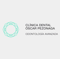Clínica Dental Pezonaga. A Design, and Software Development project by Flat         - 25.09.2013