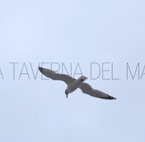 La Taverna del Mar. A Advertising, Motion Graphics, Film, Video, and TV project by Gonzalo Dubón Bayarri         - 02.01.2014