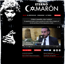 web eterno camarón. A Br, ing, Identit, Creative Consulting, and Web Design project by icede - 30-04-2014