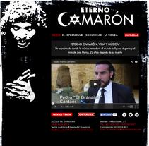 web eterno camarón. Un proyecto de Br, ing e Identidad, Consultoría creativa y Diseño Web de icede         - 30.04.2014