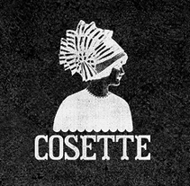 Cosette. A UI / UX, Information Architecture, and Web Development project by Clever Consulting          - 15.06.2014