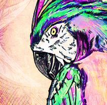 Macaw. A Illustration project by Tamara Enriquez         - 08.07.2014