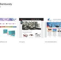 Ejemplos de páginas web. Um projeto de Web design de Belen Sambucety         - 11.08.2014