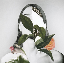 HANDMADE COLLAGES. A Fine Art, and Photograph project by Rocio Montoya - Sep 03 2014 12:00 AM