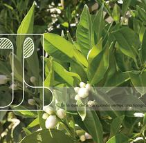Oh!. Un proyecto de Diseño gráfico y Tipografía de María Bravo Guisado         - 16.04.2015