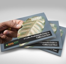 SH brochure. A Design project by okthavio         - 22.05.2015