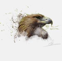 Ilustración - Águila. Un proyecto de Diseño, Ilustración, Bellas Artes, Diseño gráfico y Pintura de Miguel Angel Lallana Figueroa - 06-02-2016