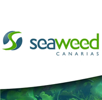 Website Seaweed Canarias. A Marketing, and Web Design project by Gabriel Guerrero Espino         - 05.09.2008