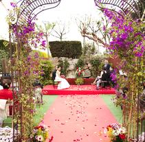 Wedding Oriol&Elena. Um projeto de Fotografia de Diana Drago         - 21.11.2016