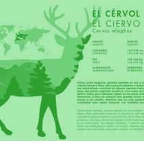 Ejemplo Plafó EL CÉRVOL. Un proyecto de Diseño de hectormolinerovives         - 30.11.2016