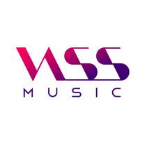 VASSmusic. Un proyecto de Diseño, Br, ing e Identidad y Diseño gráfico de Hugo Menéndez Escobar         - 05.12.2016