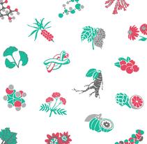 Natural Icons · Collection. Un proyecto de Ilustración, Dirección de arte y Diseño gráfico de Núria Garcia Traveria         - 01.05.2016