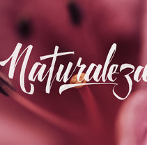 Lettering Naturaleza. A Lettering project by Stanley Garcia         - 16.11.2017